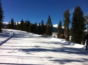 Breck 2012