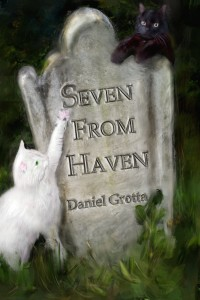 seven from haven cover